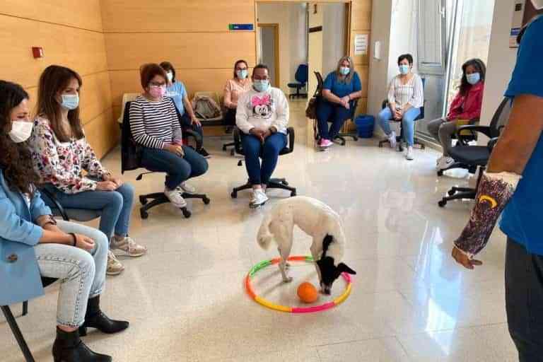 Éxito en las actividades formativas del Programa RECUAL que se está impartiendo en Argamasilla de Alba